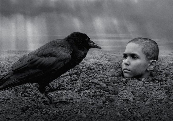 ホラーより怖い映画「異端の鳥」 あなたは最後まで見続けられるか?