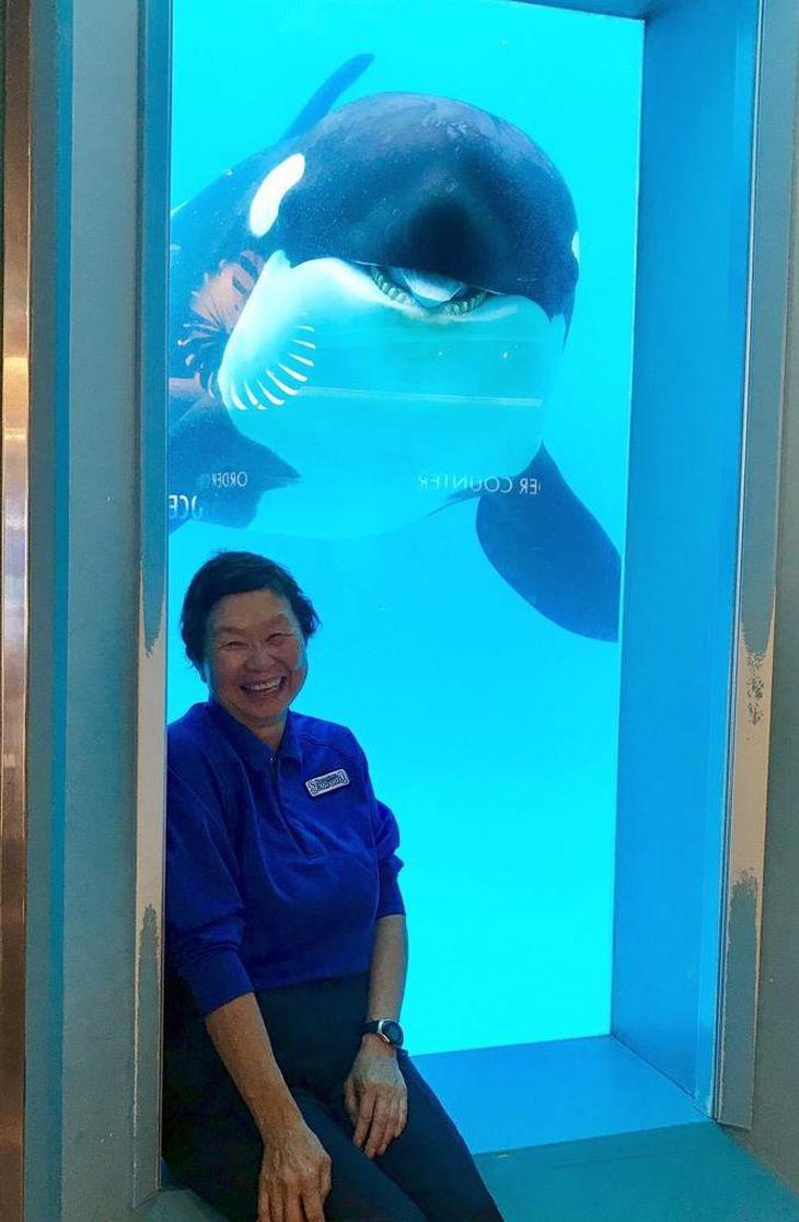 日本初、イルカの人工授精に成功した獣医師の勝俣悦子さん(65)
