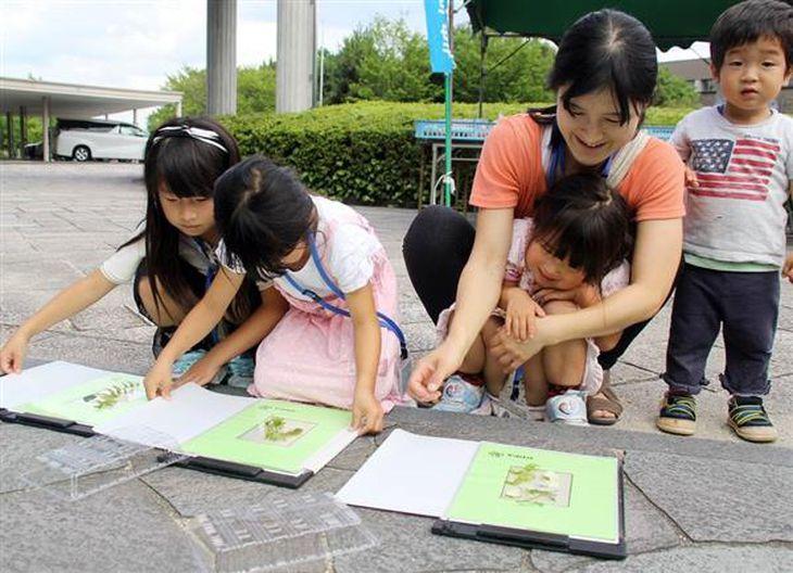 青写真を撮るため、水草を感光紙に載せて日光に当てる親子連れ=8日、滋賀県草津市